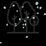 Erhalt alter Bäume Saarschleifenlodge